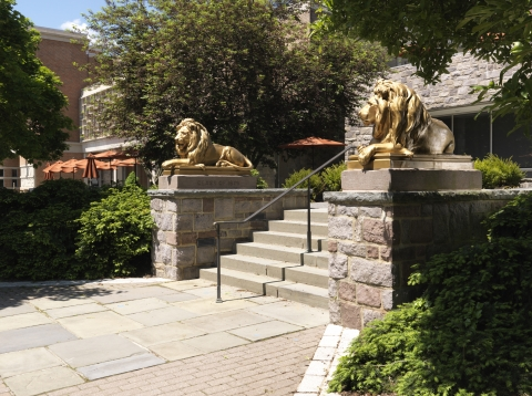 PU museum lions