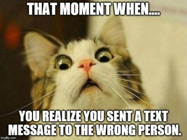 That moment when you realise you've text the wrong person with a cat pulling a horrified face