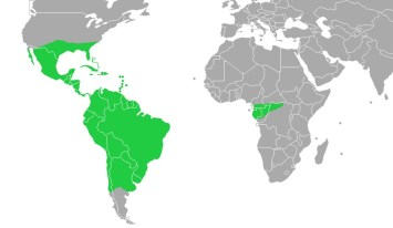 World distribution map of Bromeliaceae Juss. (Wiki Commons)