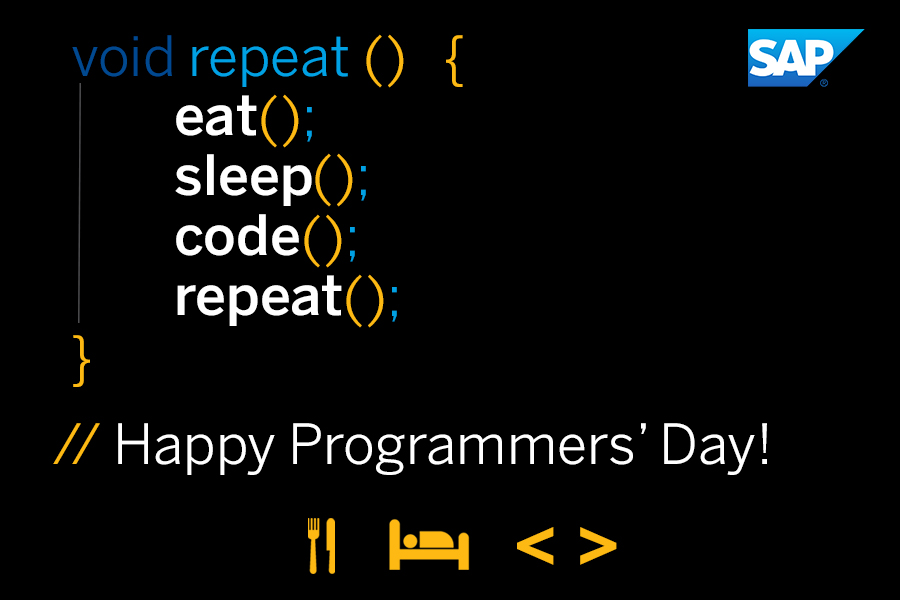 A Day In The Life Of A Programmer SAP Blogs
