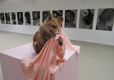 An image of a taxidermied fox on a plinth at an exhibition