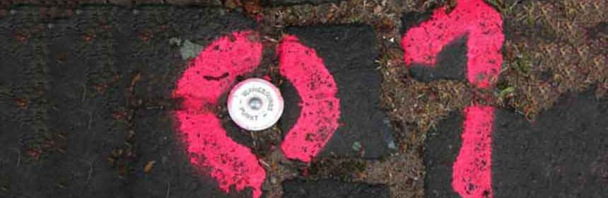 Image of 01 spray-painted on the ground