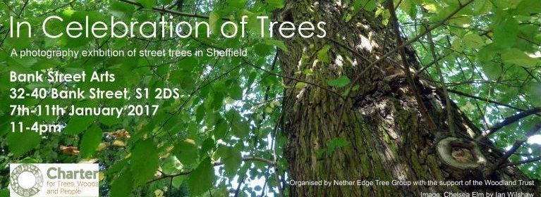 In Celebration of Trees Photographic Exhibition poster