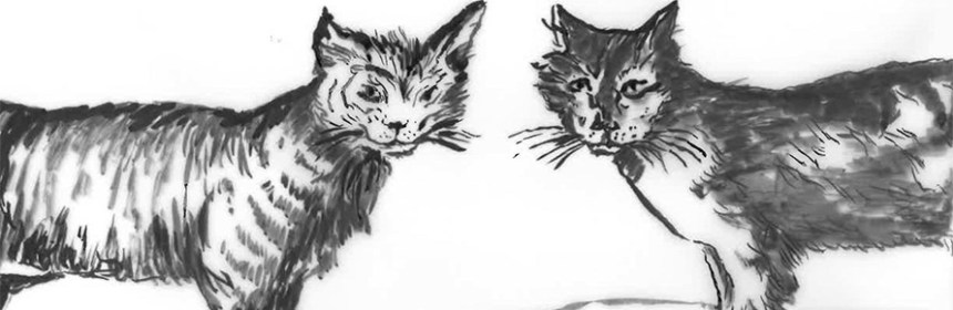 Image from Beware the Cat by Penny McCarthy