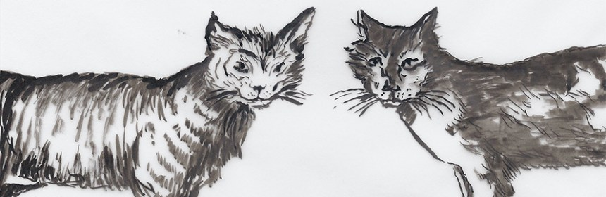 Two Cats Talking - Beware the Cat series (c) Penny McCarthy