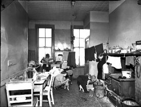 Jacob Riis New York History Of