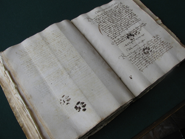 A medieval manuscript, in codex form.  Notice the ink prints from a pesky cat!