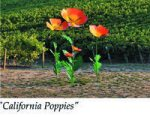 California Poppies, metal sculpture installation at Quail Run Vineyards