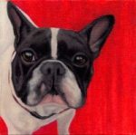 Wide-Eyed Red, pet portrait in oil by Dana Feagin, Inspired Pet Portraits