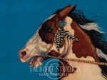 Zuni Spirit, 20 x 15 oil painting of a Paint horse with Zuni silver and turquoise Conchos and feathers by Eugenia Talbott