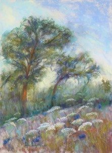 Queen Anne's Hill, pastel painting by Phyllis Gustafson