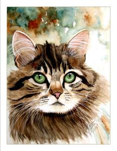Watercolor painting of a cat by Marianne Nielsen of Grants Pass. Nielsen speaks about painting in watercolor at the monthly meeting of the Southern Oregon Society of Artists on August 28, 2017.