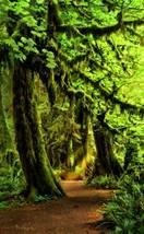 Vivian McAleavey - Seductive Pathways