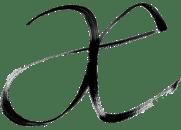 anna elkins logo