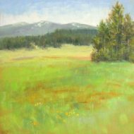 Silvia Trujillo oil paitning of an Oregon landscape in early spring
