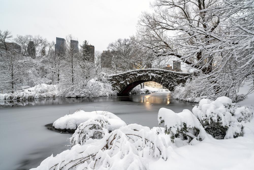 New York hiver