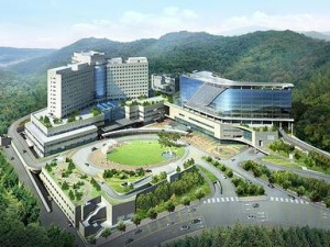 Image result for korean institute