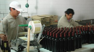 on the bottling line