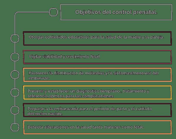 32c8a36fd Diagrama 1. Objetivos que persiguen un buen control prenatal.