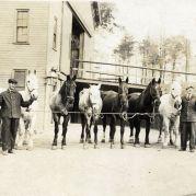 Horses, 1913