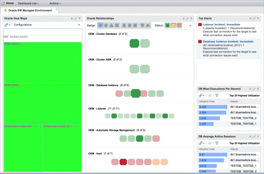 Oracle Enterprise Manager EM Environment Dashboard from Blue Medora