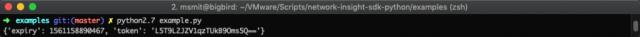 Network Insight Python SDK Sample output