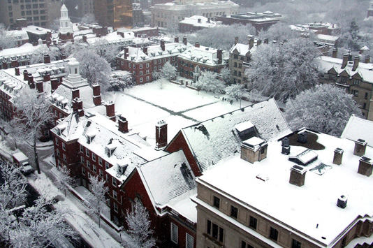 Snow in Silliman College - Frank Teng MC '13