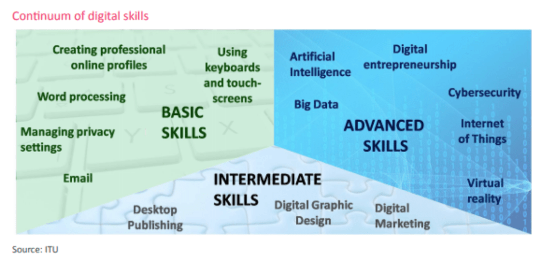 Where does MENA stand with digital skills?