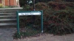 the-quiet-place