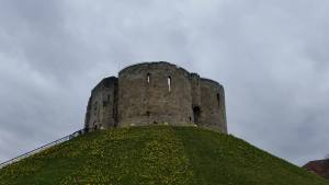 In the spring, Clifford's Tower hill is covered in nice yellow flowers.