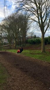 My 5 year old enjoying the mini zip line at Rowntree Park.