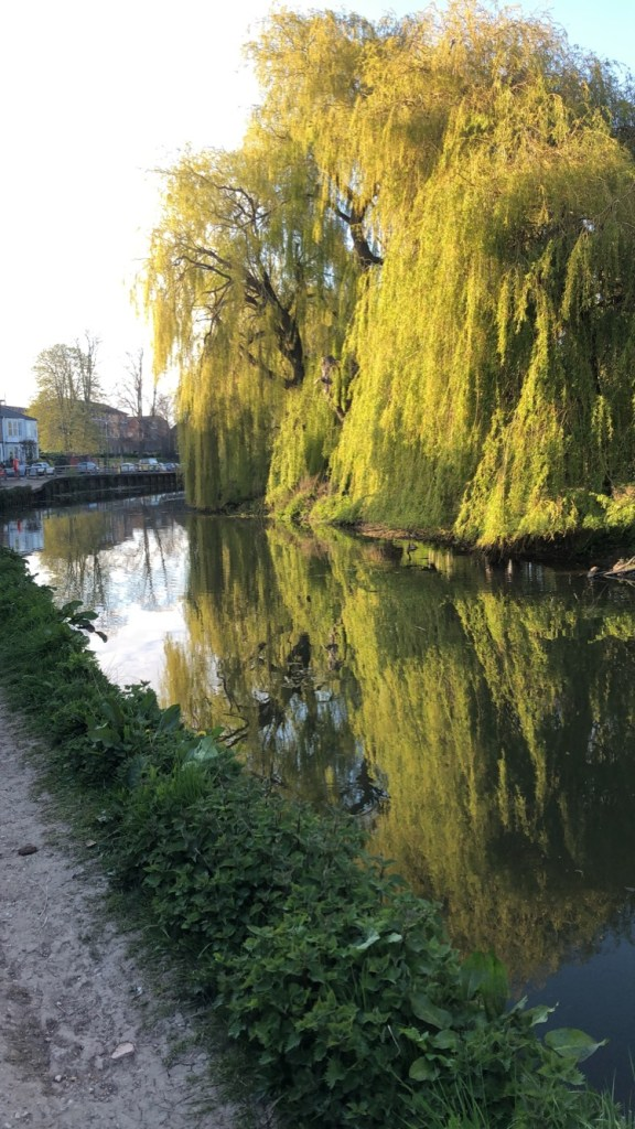 The River Foss in York