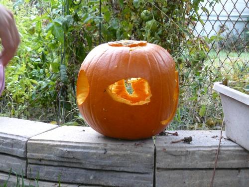 pumpkin_lenticular