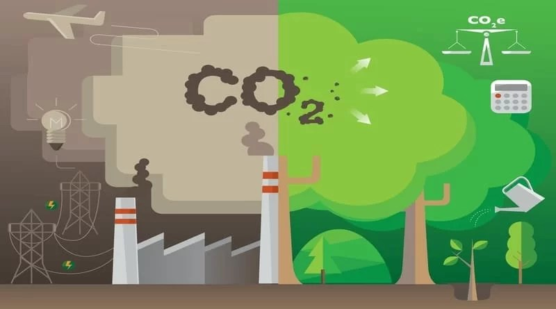Can Countries Reach the Zero Carbon Emissions Goal by 2050?