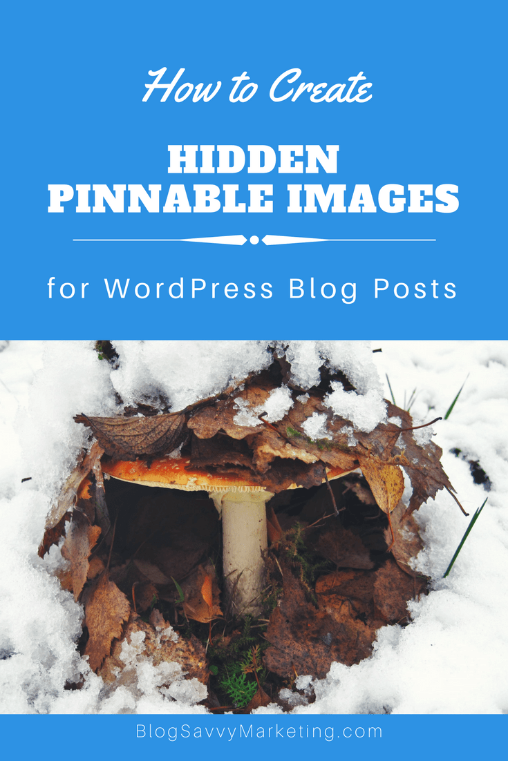 Simple steps to create hidden Pinnable images in your blog posts.
