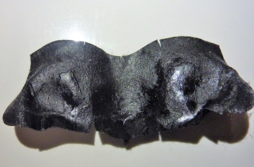 biore-used-strip-close-up