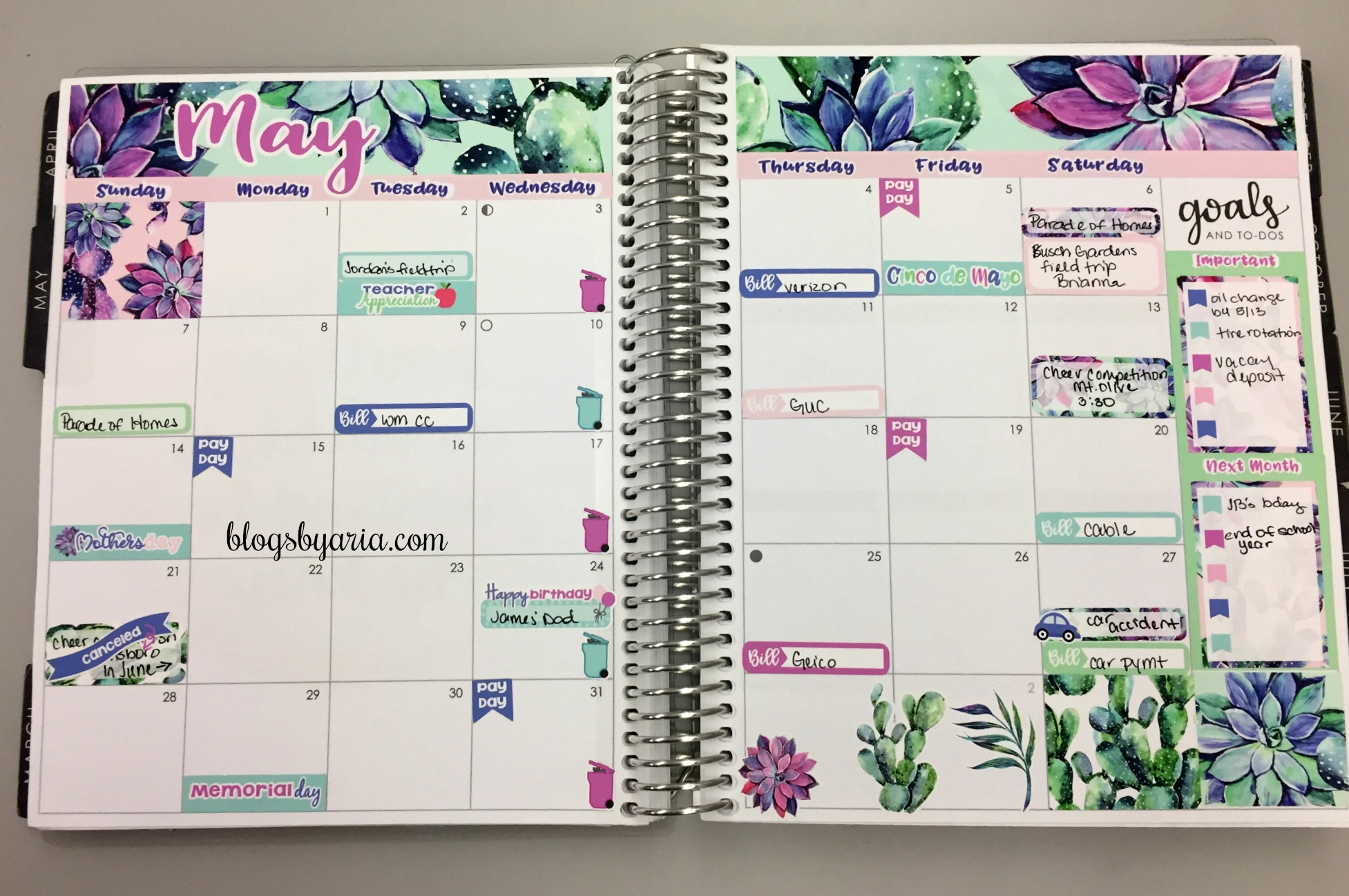 May Monthly Succulents Kit