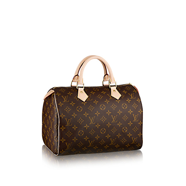 Louis Vuitton Speedy 25 in Monogram Canvas