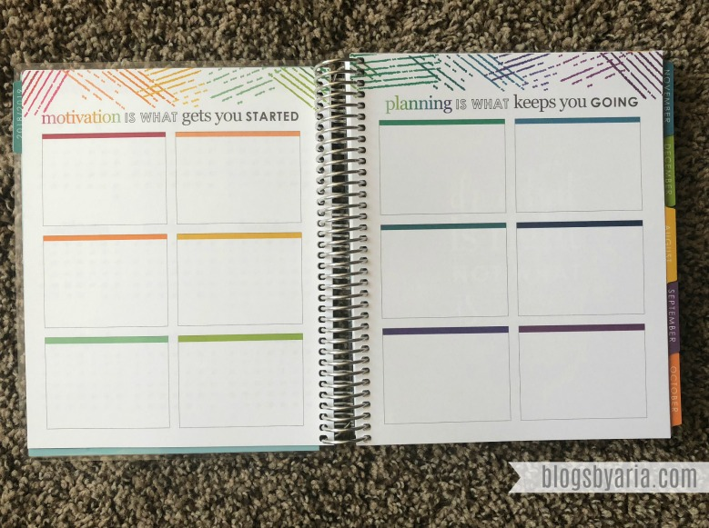 goals pages in the Erin Condren Deluxe Monthly Planner