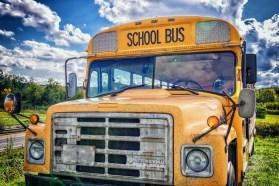 bus-2759073_1920