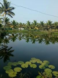 Lake side