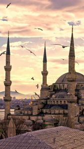 Explore Istanbul with kids and family