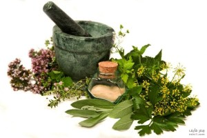 herbal-remedies-what-are-the-benefits-of-herbs
