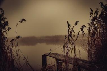nebel-174