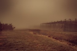 nebel-188