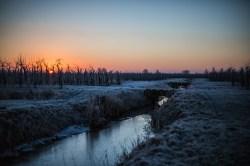 frozen-073