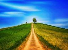 Oração para abrir o caminho da prosperidade