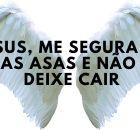 Jesus, me segura em suas asas e não me deixe cair
