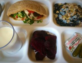 Homemade falafel in a whole wheat pita, with local lettuce and tomato and homemade tahini dressing; local blueberries; homemade granola; homemade tofu and blueberry custard; and dehydrated beetroot chips.