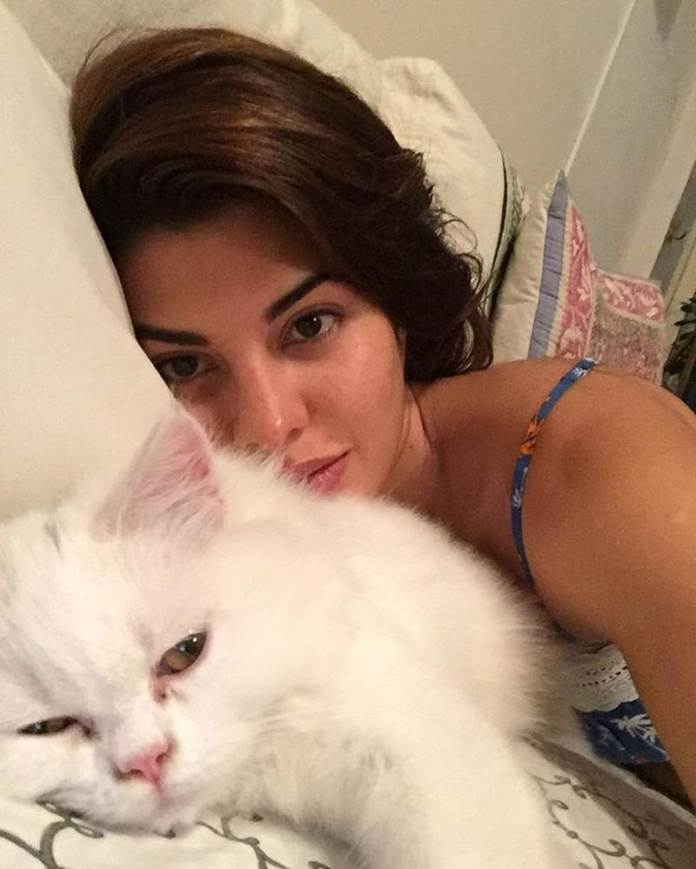These Celeb Pet Selfies are so cute they will melt your heart right out!- Jacky 1